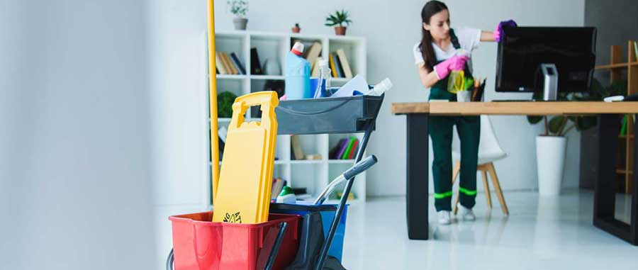 tipos de limpeza profissional